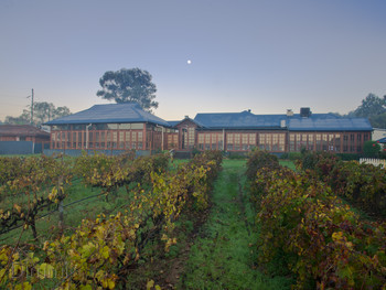 Black Swan Winery and Restaurant Henley Brook - Modern Australian cuisine - image 2 of 12.