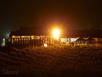 Black Swan Winery and Restaurant Henley Brook - Modern Australian cuisine - image 3 of 12.