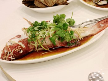 Fortune King Seafood Restaurant Beverly Hills - Cantonese cuisine - image 8 of 9.
