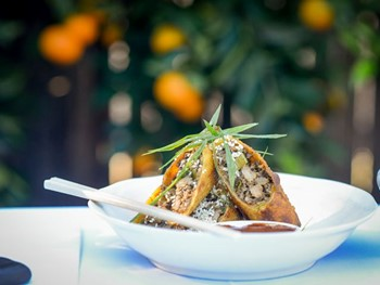 Hungry Duck Berry - Asian  cuisine - image 10 of 10.