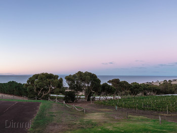 Jack Rabbit Vineyard Bellarine - Modern Australian cuisine - image 4 of 6.