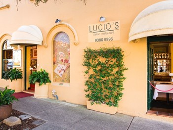 Lucio's Italian Restaurant Paddington