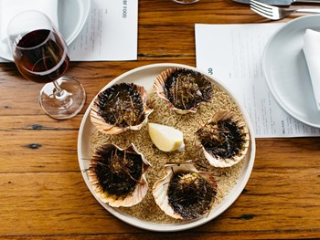 North Bondi Fish Bondi - Seafood cuisine - image 2 of 19.