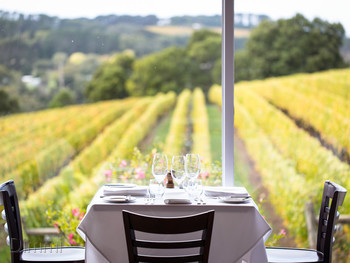 Paringa Estate Winery & Restaurant Red Hill South