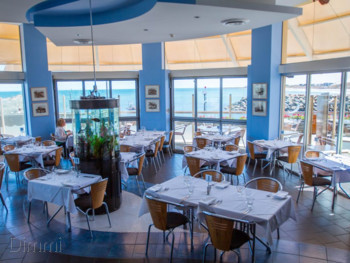 Sammy's on the Marina Glenelg - Seafood cuisine - image 1 of 6.