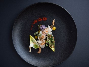 Temple of Tastes Palm Cove - Modern Australian cuisine - image 2 of 4.
