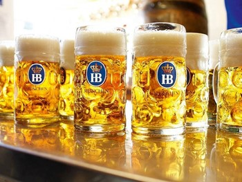 The Bavarian Beerhaus Bowen Hills - European cuisine - image 2 of 3.