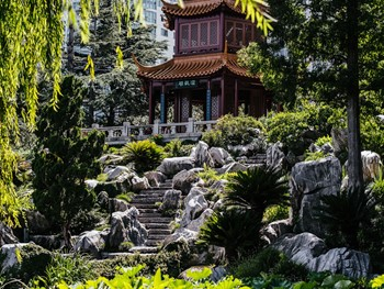 The Gardens by Lotus Sydney - Chinese cuisine - image 3 of 8.