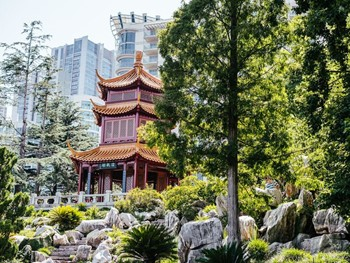 The Gardens by Lotus Sydney - Chinese cuisine - image 5 of 8.
