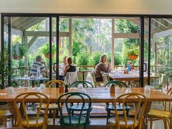 Wild Canary Brookfield - Modern Australian cuisine - image 8 of 11.