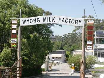Wyong Milk Factory Cafe Wyong - Cafe  cuisine - image 2 of 4.